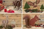 Forest Walk: la nuova linea tematica di Pixartprinting