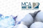 In arrivo da MCA Digital il Samples Book